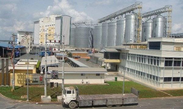 Giải pháp máy chấm công công nhân ra vào cho nhà máy – xí nghiệp